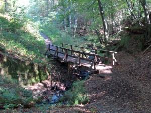Brücke im Kasbachtal