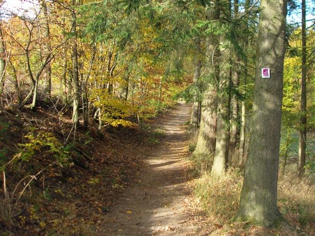 Traumschleife Baybachklamm 7