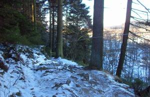 schneebedeckter Wurzelpfad
