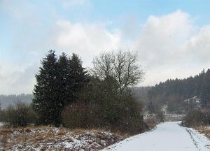 Schnee in der Eifel