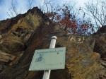 Buchsbaum-Wanderpfad