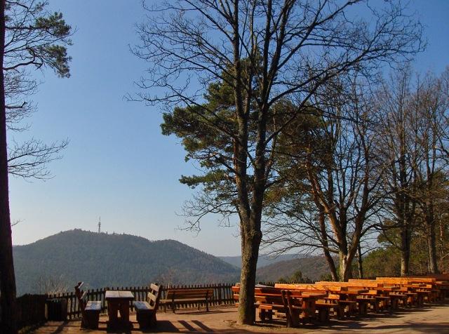 Blick vom Hohe Loog Haus auf den Kalmit