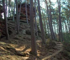 Waldpfade an Felsen vorbei