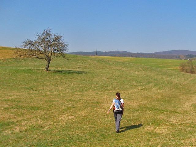 Wiesenpfade die über freie Flächen führen