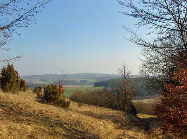 Naturschutzgebiet Hönselberg