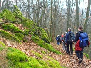 Gruppenwandern auf schmalen Pfaden