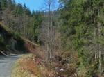 weiter durch das Tal