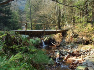 Brücken und Bäche säumen die Tour
