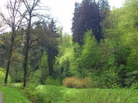 Im Mengbachtal