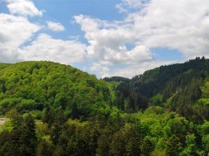 Das Üßbachtal