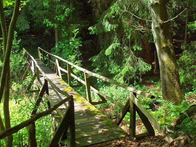 Blick zurück - Eine Brücke am Klosterweg