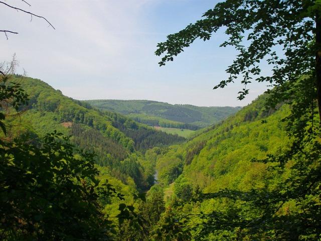 Aussicht von der Elisabethhöhe ins Wiedtal