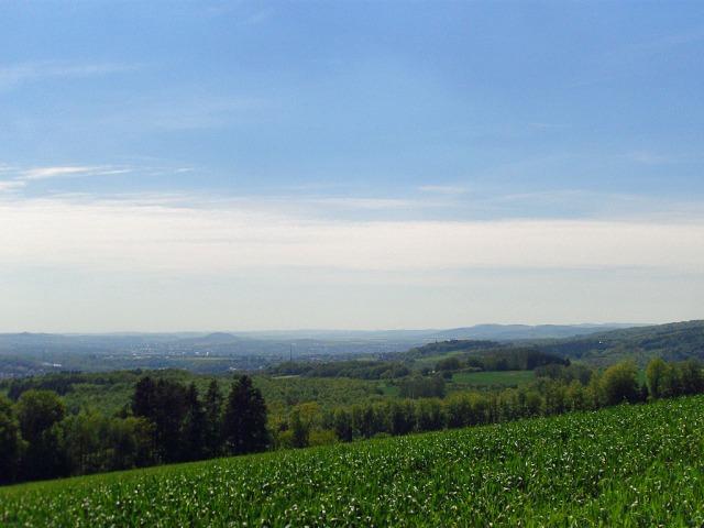 Blick ins Rheintal