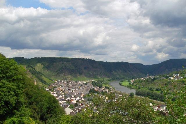 Steilhänge der Terrassenmosel mit Blick auf Kobern Gondorf