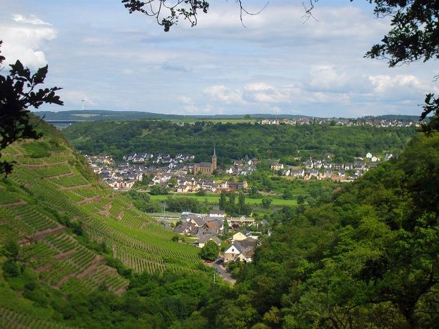 von einem Pfad blickt man auf Dieblich und kann links den Fernmeldeturm in Koblenz erkennen