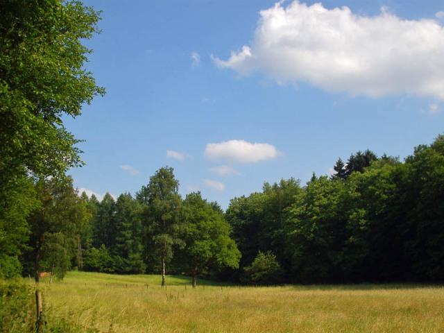 Im Logebachtal