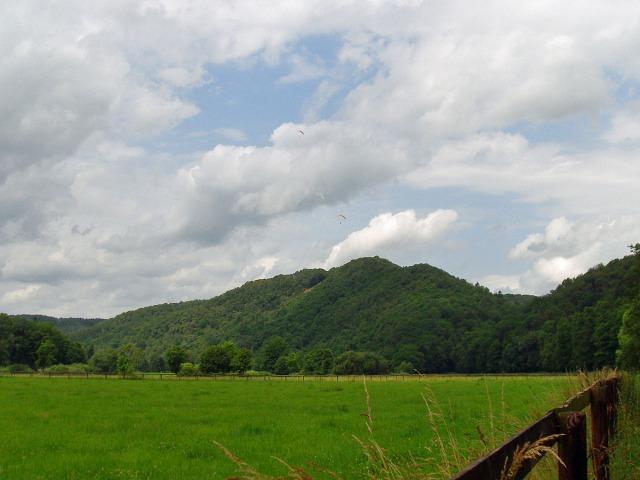 zwischen den Weiden der Blick auf den Stachelberg