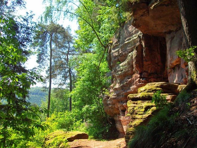 Der Blick zurück - Sonne, Wald, Felsen & Pfade - Wanderherz was begehrst Du mehr?