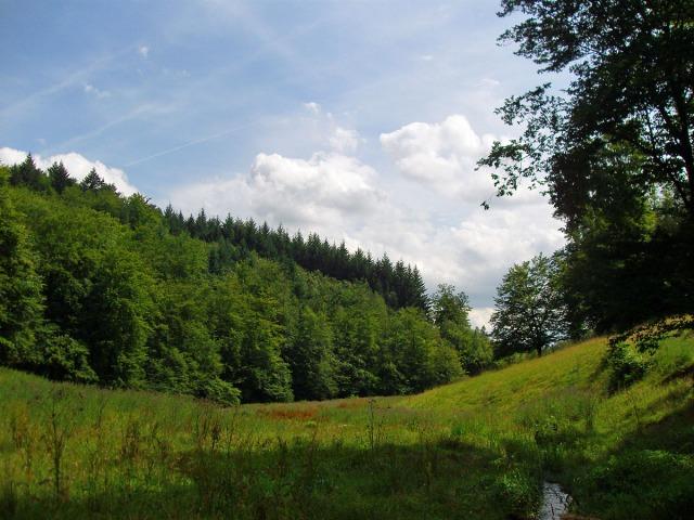 im Laubachtal - diesmal liegt der Bach im Schatten