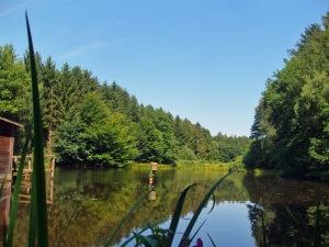 der erste Teich
