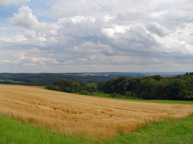 Felder und Weitblick