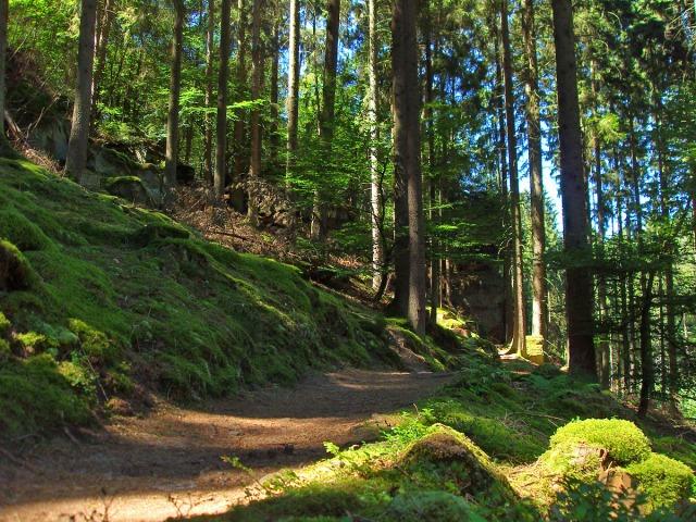 entlang der Extratour Mullerthal-Trail
