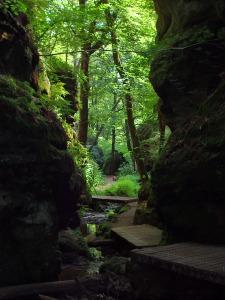 kleine Brücken im kühlen Tal