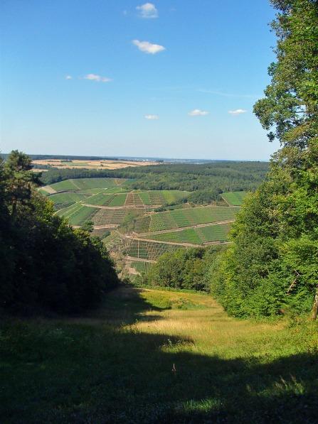 An der Paragliding Wiese - der Blick ins Tal