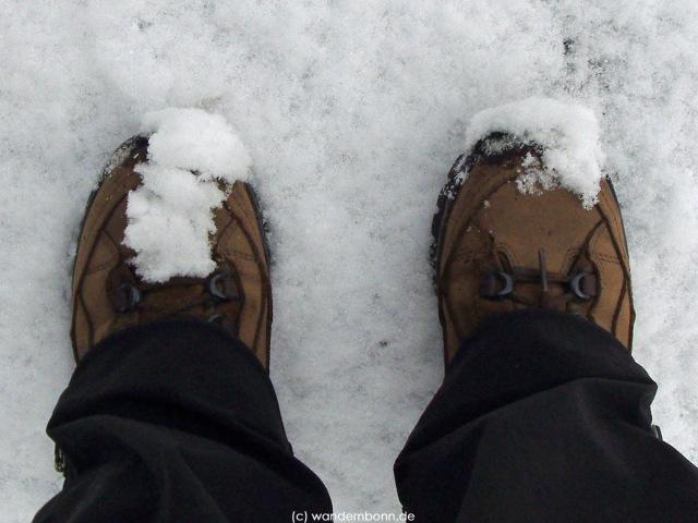 Dezember 2011 - noch unbehandelt im Schnee