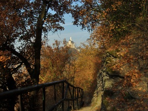 November Rheinsteig