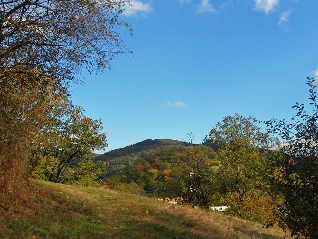 Wiesenpfade zum Clausberg