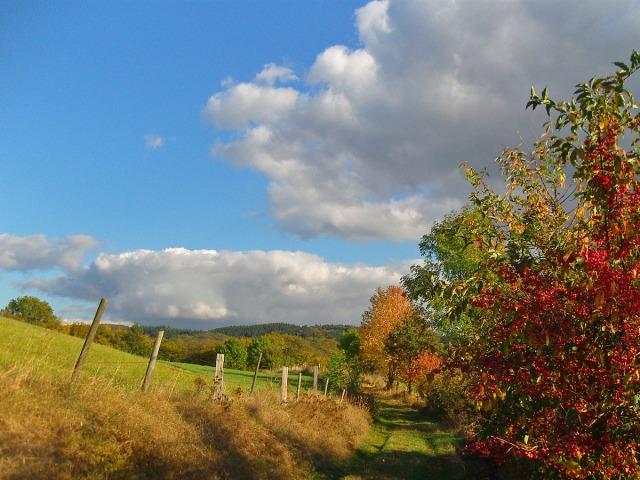 Bunt - Bunter - Herbst