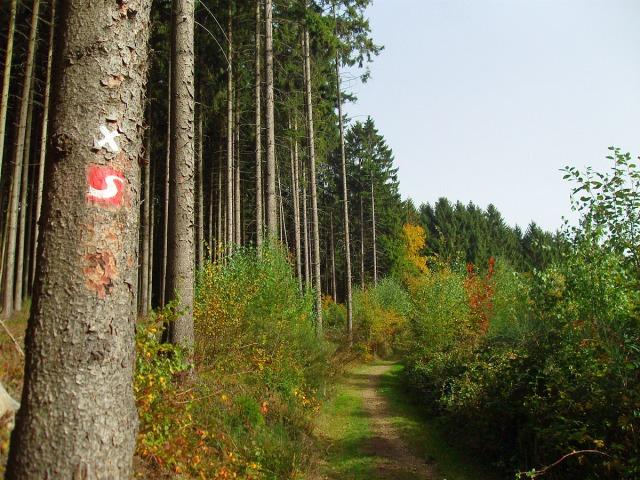 Naturwege