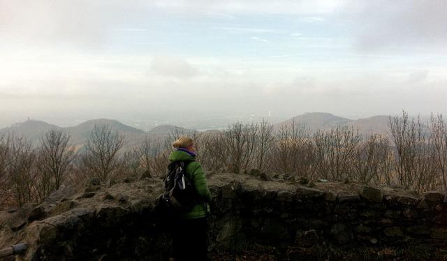 Blick von der Löwenburg auf das Siebengebirge