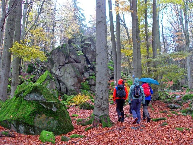 Bunte Truppe auf dem Weg zur Steinwand