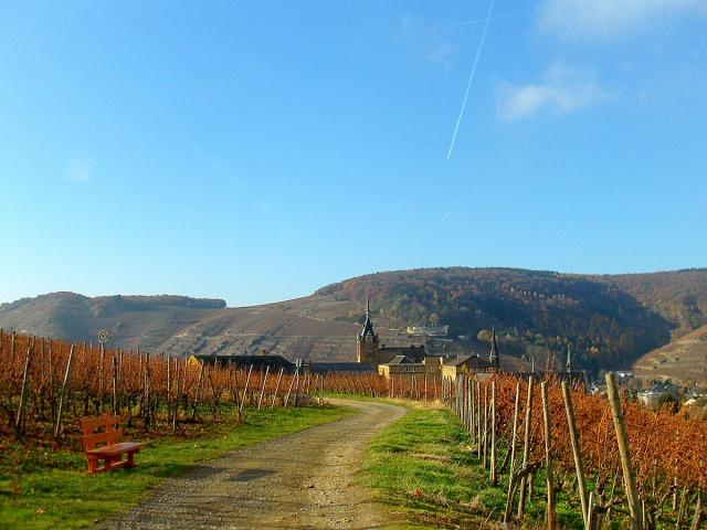 Blick zurück - das Kloster Calvarienberg
