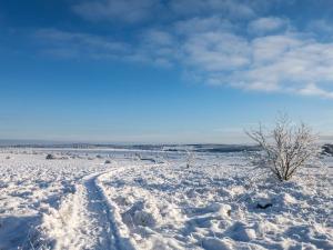 Hohes_Venn_Schnee_Winter