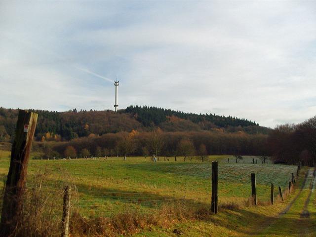 Wiesenwege und der Blick auf den Turm