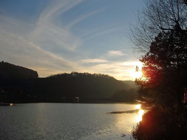 Lichtstimmung am Waldsee