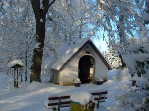 Waldkapelle Decke Tönnes
