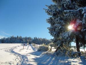 Schneetour rund um den Michelsberg bei Bad Münstereifel