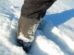 Schneepflug-Beinchen