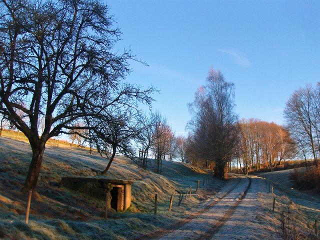 frostiger Wiesenweg