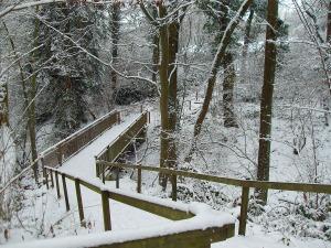 Brücke über den Wittgesbach