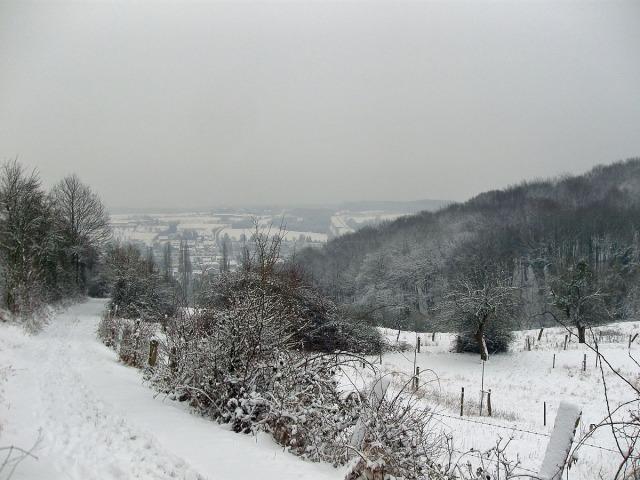 Der Weg nach Niederbachem