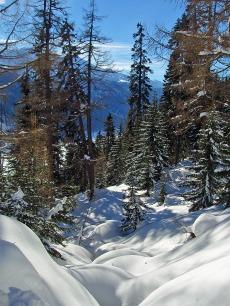 WinterWunderWelt