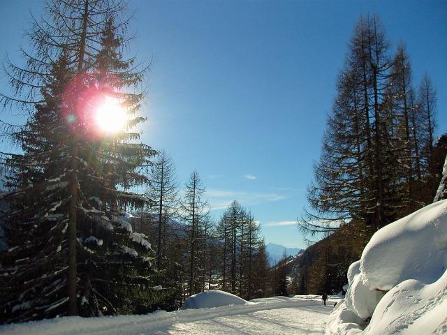 Der Wanderweg nach Oberwald
