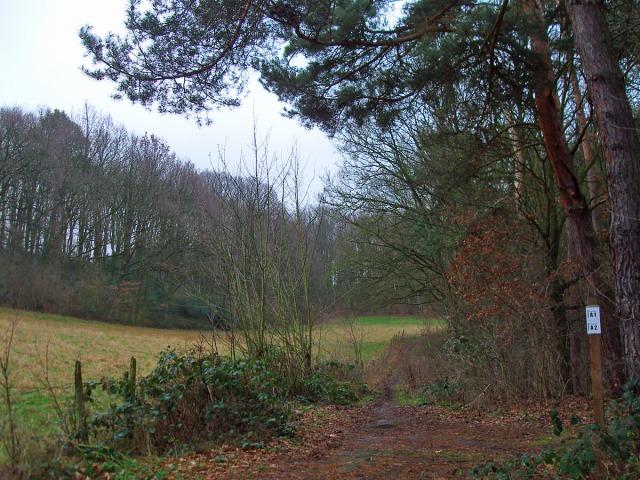 Wegeführung vor dem Griesberg