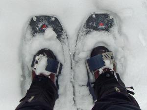 mit Schneeschuhen