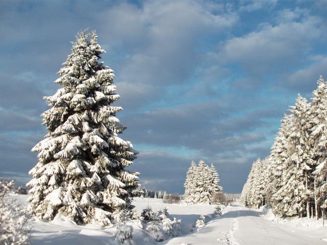 Ein Wintertraum
